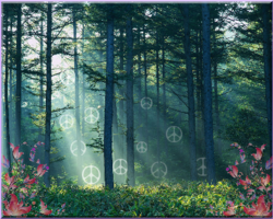 forest with transparent peace signs in rays of sun